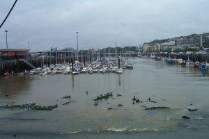 Haven Boulogne, rechts liggen de vissers en het stadscentrum. Merk op dat de aalscholvers op de voorgrond hun vleugels spreiden. Dat is - heb ik wel eens gehoord - om de spijsvertering te bevorderen