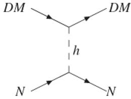 Een deeltje N, bijvoorbeeld een quark, reageert met een donkere materie deeltje (DM) onder uitwisseling van een Higgs-deeltje (h)