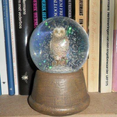 De enige sneeuw valt vandaag bij ons thuis in de sneeuwbol in mijn boekenkast