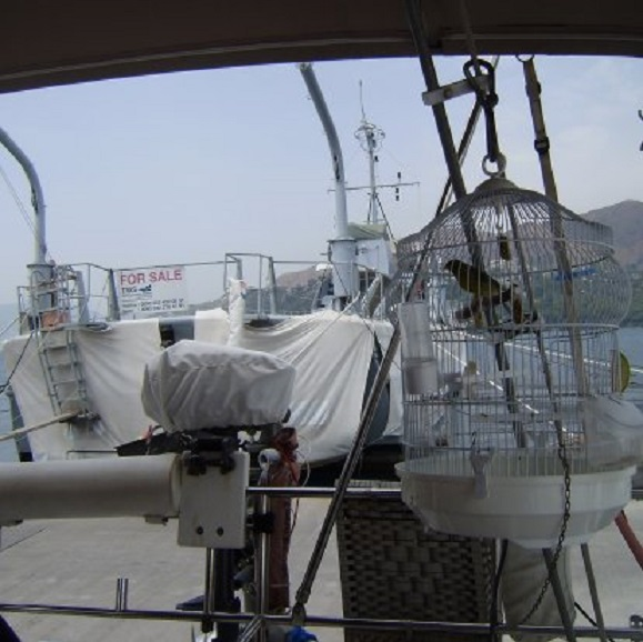 Www Sailing Dulce Nl